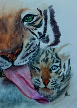 Tigermother with her Baby by TheGingerBandit