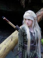 Mirkwood Elf 10 by Liancary-art