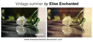 Vintage summer action by EliseEnchanted