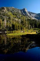 Lilly Lake by Caitiekabob