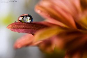 Just a drop by Asem-A
