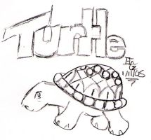 Turtle by minadae