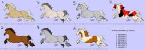 horse POINT adoptables CLOSED by Juzoka-Vargulf-Eqqus