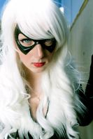 Black Cat - Stare Down by Lady-Kathryn