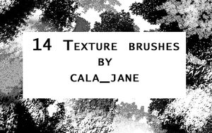 Texture Brushes by calajane