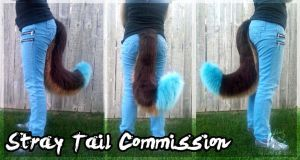 Stray Tail Commission by WindWo1f