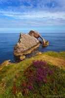 Bow Fiddle Rock by Dave-Derbis