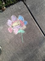 Sidewalk chalk art: Flower by AnaturalBeauty