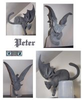 Peter the Catgoyle - complete by crokittycats