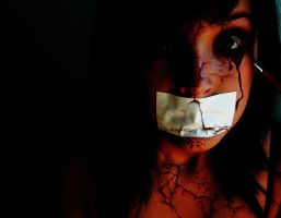 Screamer by PaulaMCollins