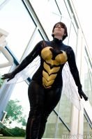 BW13 - Wasp by BlizzardTerrak