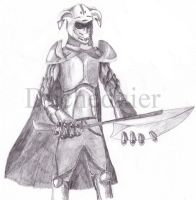 Knight_Commission by Duchednier