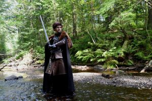 Robb Stark - The Young Wolf by RiKyo5