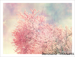 Invisible Treasures by colourfascination