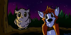 Night time by Barscuk