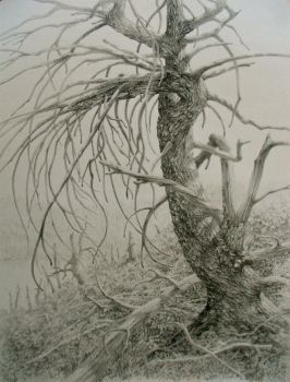 Tree Afterlife 3 by Caddisman