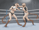 Yin vs Yang - Topless Boxing Fight by Gexon