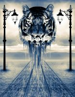 Tiger Dream by AbruzziProject