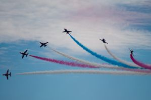 red arrows split by panRobus