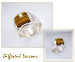 Tiger Eye Inlay Ring by jessa1155