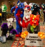 Furry Migration 2014 by SpiritWolf101
