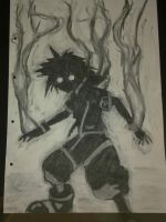 Shadow Sora by A-Black-Angel