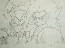 Goku and Vegeta by tai4