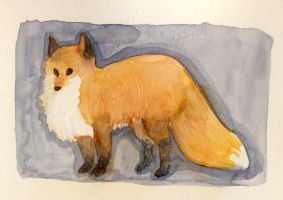 Foxes are orange. by Limely