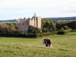 Castle Stuart near Inverness by piglet365