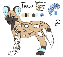 Taco Ref sheet by PawesomeSauce