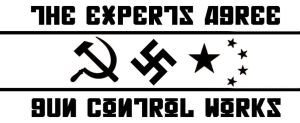Gun Control Experts by niveknailgun