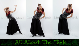 All About the 'Tude Pack by lindowyn-stock