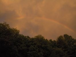 Rainbow Over Trees 06 by Geak-of-Nature