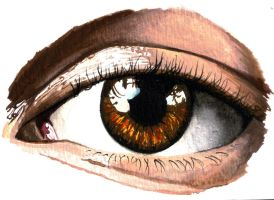 Eye Study by draw2live