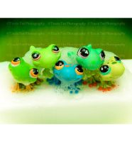 Five Little Frogs by tracieteephotography