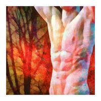 torso. trees. by montroytana