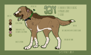 Jay Reference 2013 by d-estruct