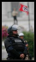 Riot Officer and Nazi Flag by StudioFovea