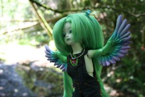 Fly by china-dolls