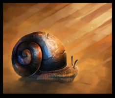 Snail by Wolfgan