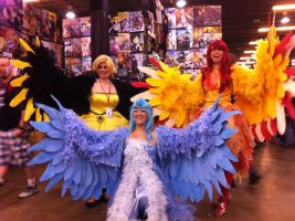 A-Kon 25-Legendary Birds of Kanto by Snake-n-DA-boX