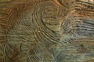 Wood Texture 19 by Limited-Vision-Stock