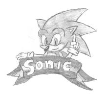 Sonic and the Banner by sonicfan564