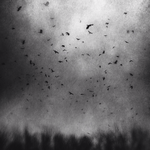 Chaos by intao