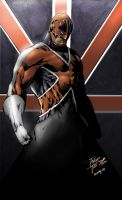 Captain Britain by panelgutter