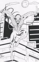 web slinger2012 by ThaDook