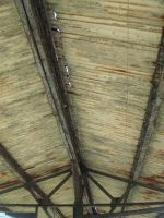 Rusted Roof_by DesignDivala by Designdivala