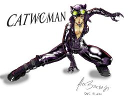 catwoman by tedmcfly