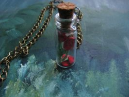 mini roses in a bottle by life--in-technicolor