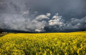 Canoa Crop and Storm by pictureguy